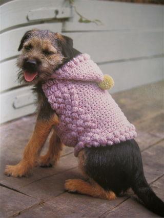Retro Knitting Site Dog Coat Patterns - YouTube